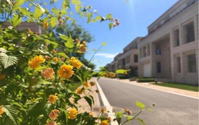 广州写字楼租赁呈现复苏迹象 ;下半年预计新增40.3万平